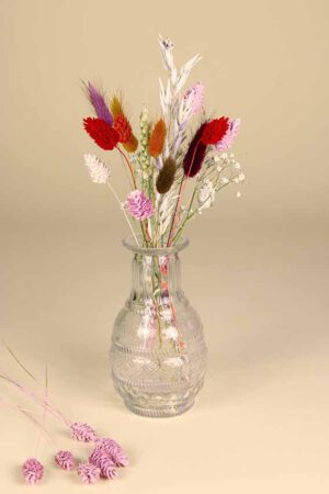 klein vaasje droogbloemen mini regenboog wit