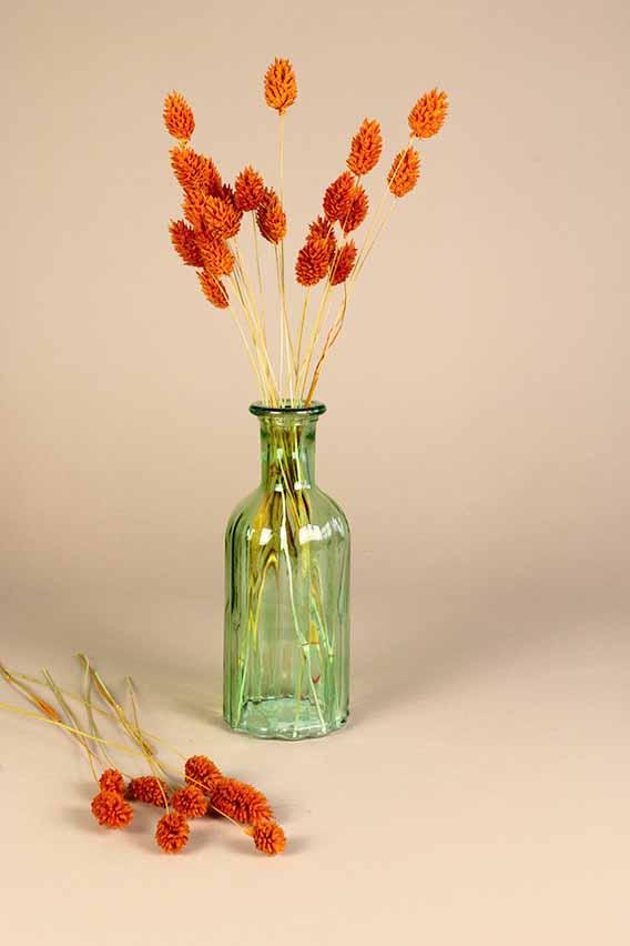 klein vaasje droogbloemen mini phalaris oranje