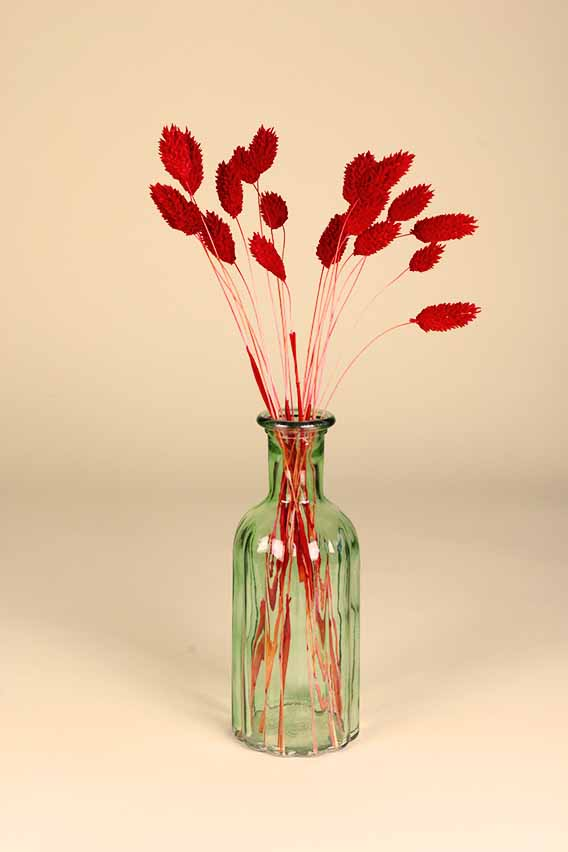 klein vaasje droogbloemen mini phalaris rood