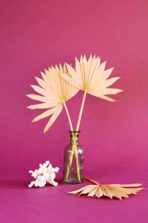 klein vaasje droogbloemen mini palm