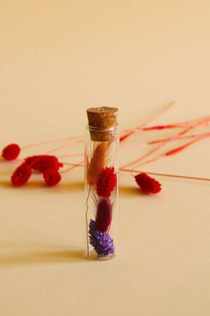 buisje droogbloemen rood paars