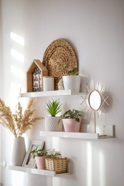 droogbloemen in interieur