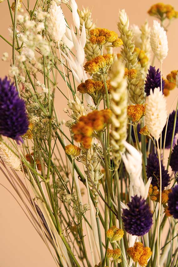droogboeket lente kriebels volgende close up