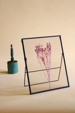 lijst met droogbloemen gypskruid roze